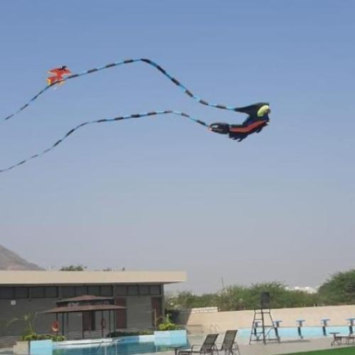 kite-festival-2021-002